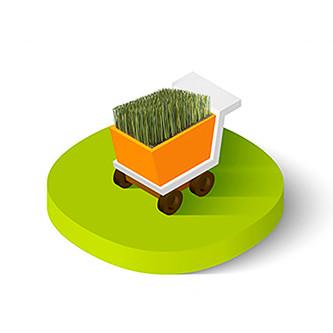 italgreen-landscape-vendita-erba-sintetica