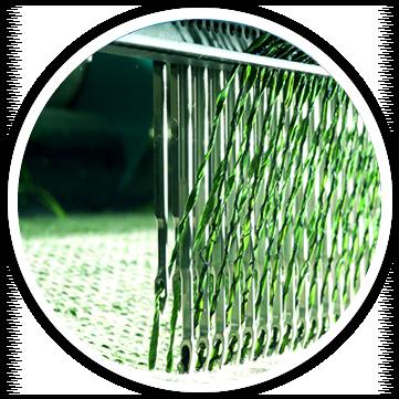 rotoli in erba sintetica