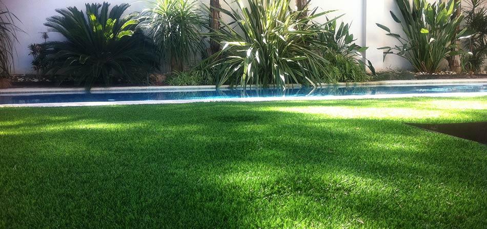 Tappeti Verdi Per Giardino: Fiori per giardino quali ...