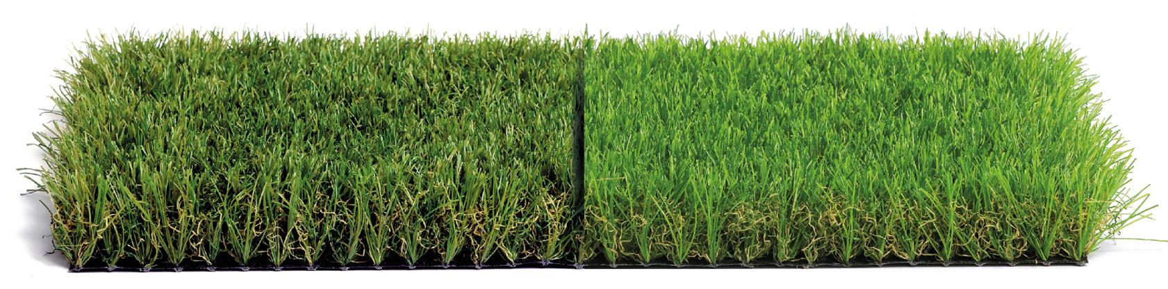 confronto-erba-sintetica-colore