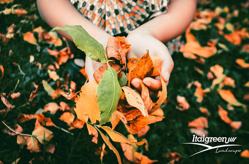 autunno-in-giardino-stagione-fredda
