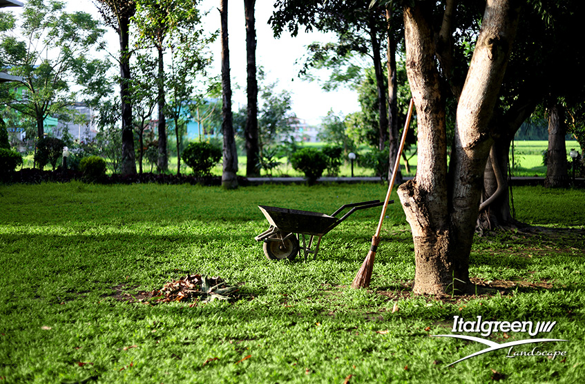 giardini-condominiali-manutenzione