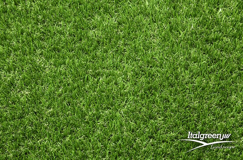 l'erba del vicino è sempre più verde Fine Italgreen