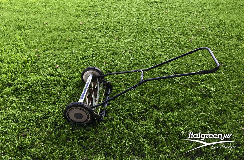 l'erba del vicino è sempre più verde tosaerba