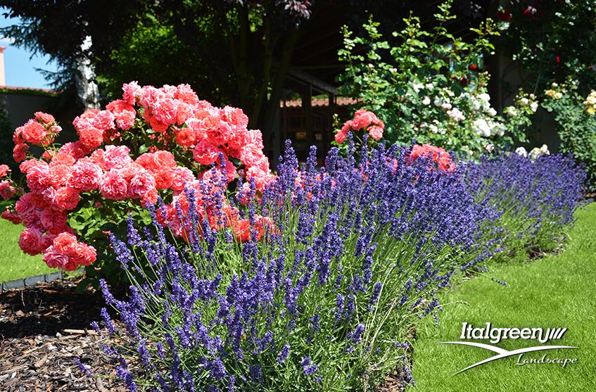 preparare il giardino alla primavera