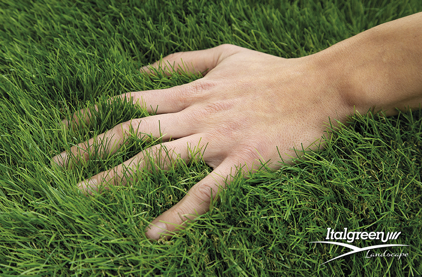 Fine Soft Touch e Dreamy Natural Look, la rivoluzione dell'erba sintetica di Italgreen Landscape