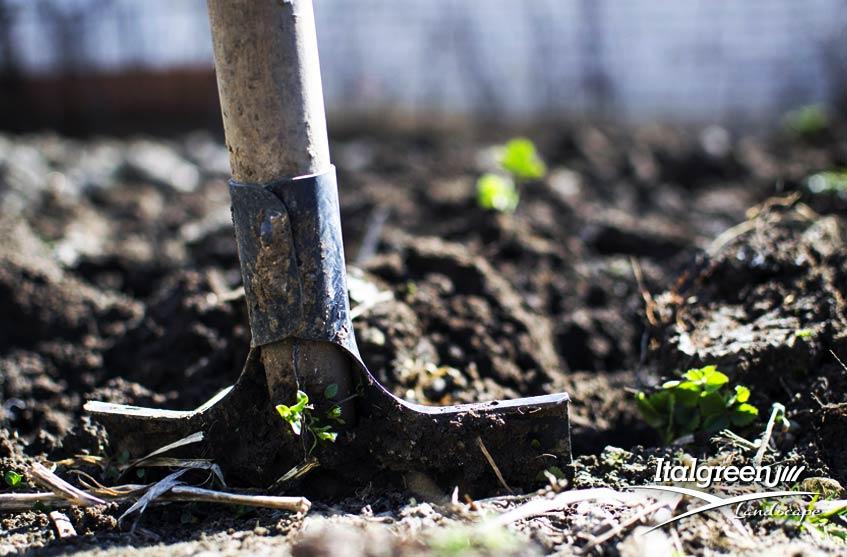 Lavori in giardino ad agosto