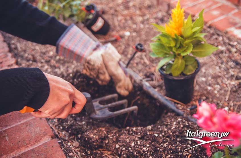 lavori in giardino novembre orto