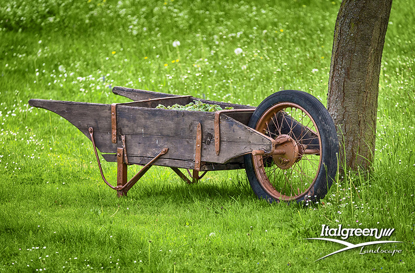marzo in giardino lavori da fare italgreen landscape
