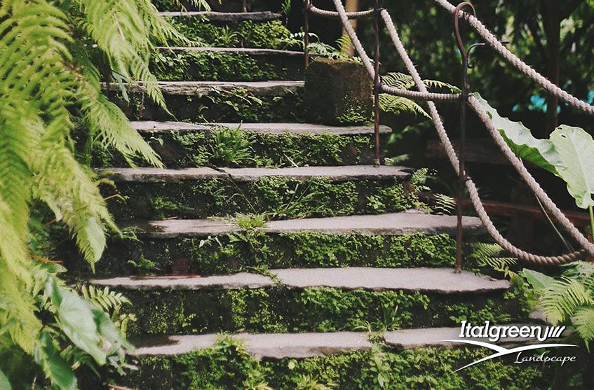 Guida pratica per progettare il giardino verde Italgreen Landscape