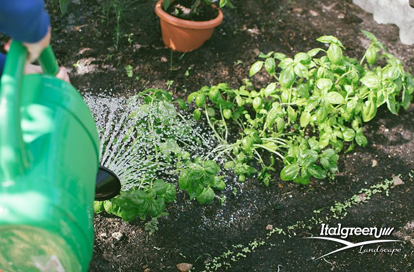 Quali lavori fare ad aprile in giardino innaffiare Italgreen Landscape
