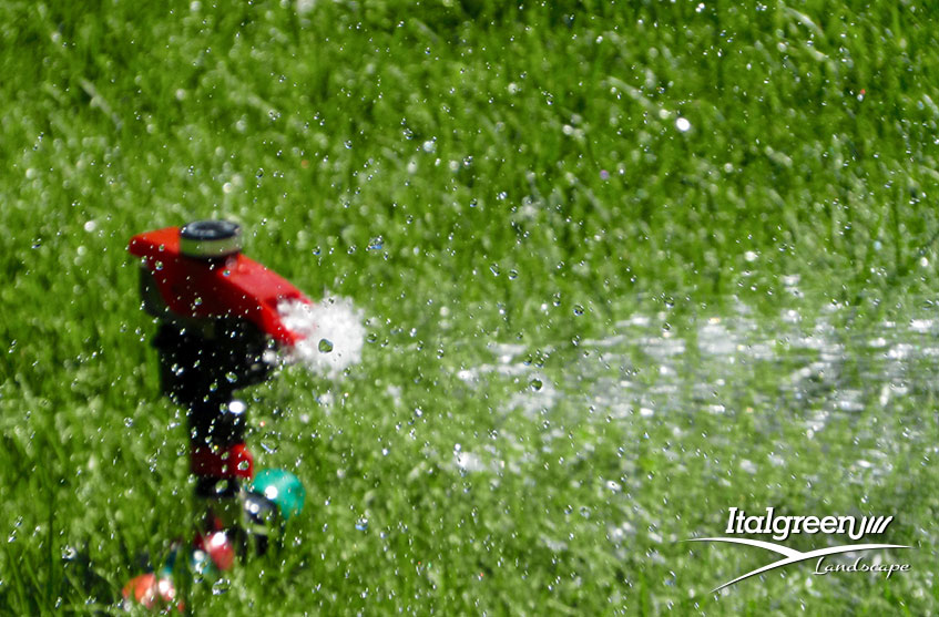erba artificiale per risparmiare acqua