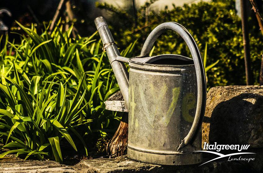 consigli per irrigare il prato in estate